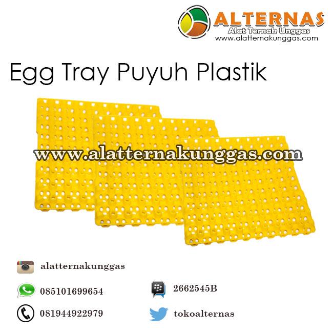 egg tray puyuh plastik